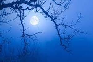 Full Moon Haunted Harbor Cruise & Tour